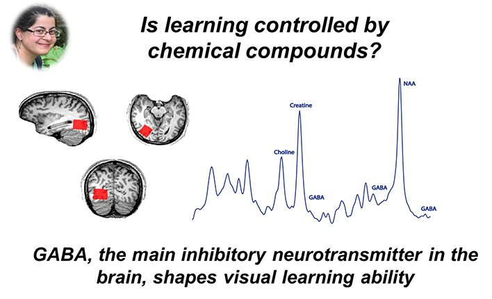 Is learning controlled by chemical compounds?